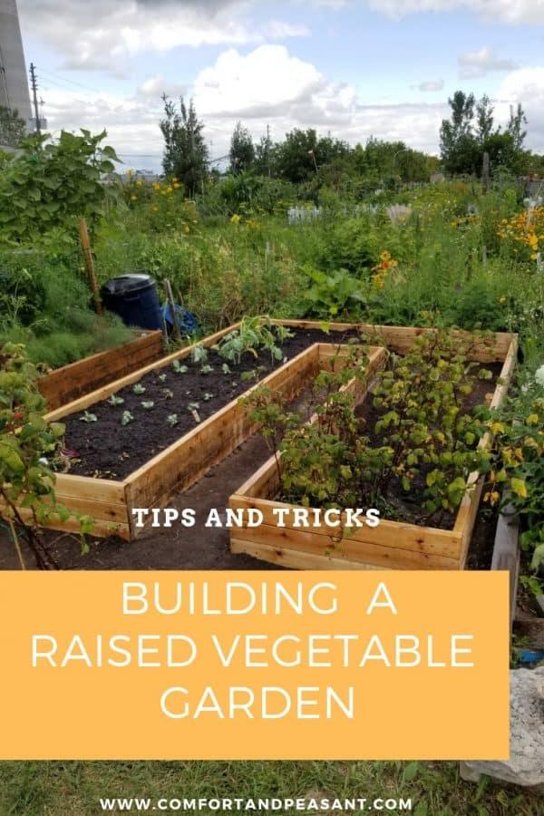 Building A Raised Garden Bed Comfort Peasant
