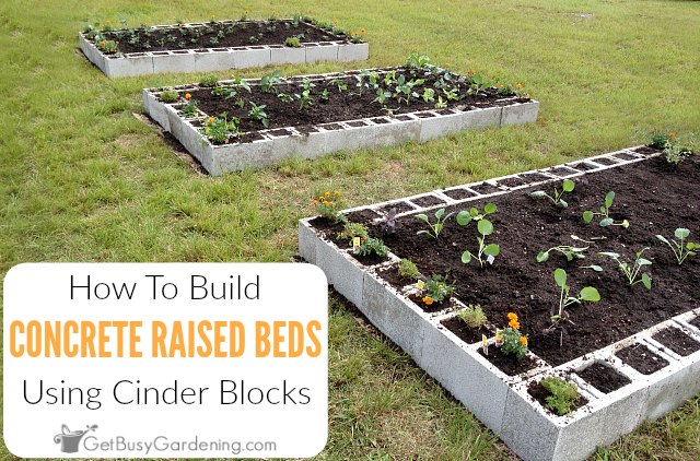 BUILDING A RAISED GARDEN BED ~ Comfort & Peasant