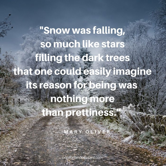 20 INSPIRATIONAL QUOTES FOR THE BEGINNING OF WINTER ...